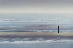 Fog in November by Mark Van Crombrugge
