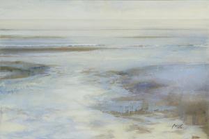 Winter Impression by Mark Van Crombrugge