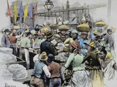 Market in Georgetown, Capital of Guyana, Guyana, 19th Century