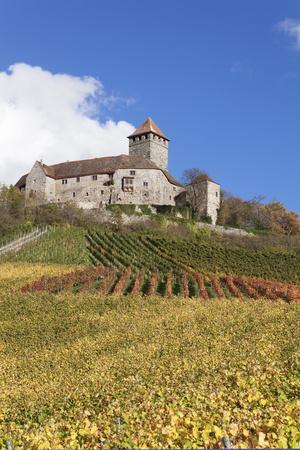 Burg Lichtenberg Castle