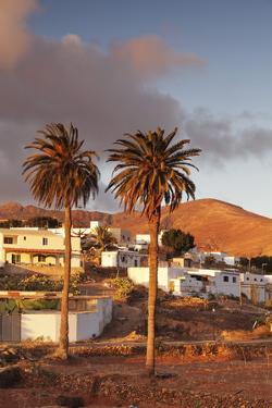Palm Trees and the White Village of Toto at Sunset, Fuerteventura, Canary Islands, Spain, Europe by Markus Lange