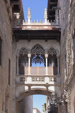 Pont del Bispe, bridge over Carrer del Bispe street, Palau de la Generalitat, Barri Gotic, Barcelon by Markus Lange