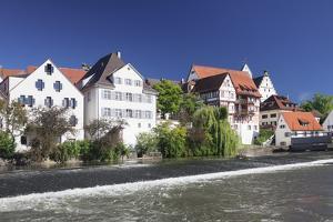 Riedlingen, Danube River, Upper Swabia, Baden-Wurttemberg, Germany, Europe by Markus Lange