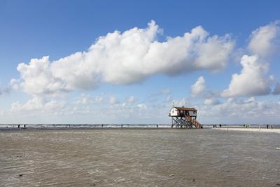 Stilt Houses on a Beach