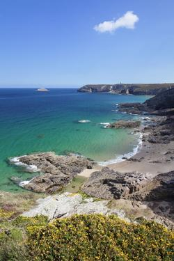 View Along the Cliffs of Cap Frehel to the Lighthouse, Cotes D'Armor, Brittany, France, Europe by Markus Lange