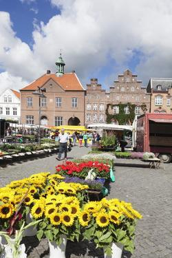 Weekly Market at the Market Place of Husum, Schleswig Holstein, Germany, Europe by Markus Lange
