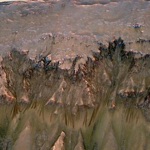 Mars Landscape Showing Flows That Appear in Spring and Summer on a Slope Inside Mars' Newton Crater