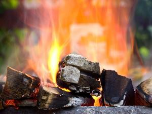 Firewood Burning in the Brazier by mars58