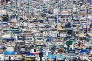 Marseille, Provence-Alpes-Cote d'Azur, France. Multitude of different leisure craft in the Vieux...