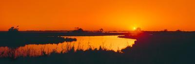 Marshland at dusk, Bayou Country, Route 57, South of Houma, Louisiana, USA