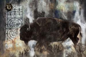 Buffalo by Marta Wiley