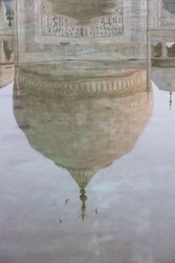 Reflection of the Dome of the Taj Mahal, Agra, Uttar Pradesh, India, Asia by Martin Child