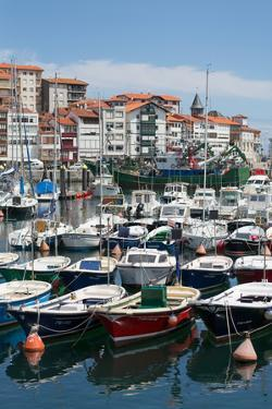 Traditional Fishing Boats Moored in the Harbour in Lekeitio, Basque Country (Euskadi), Spain by Martin Child