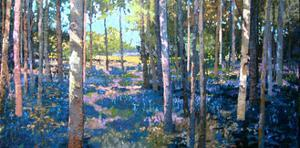 Bluebell Wood, 2009 by Martin Decent