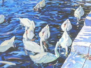 Swans, 2000 by Martin Decent