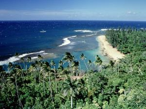 Kee-E Beach, Na-Pali Coast, Kauai, Hawaii by Martin Fox