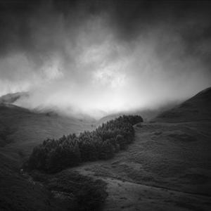 Misty Weather I by Martin Henson
