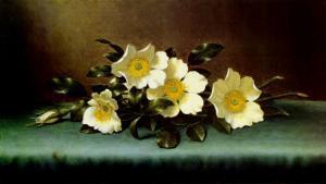 Four Cherokee Roses by Martin Johnson Heade