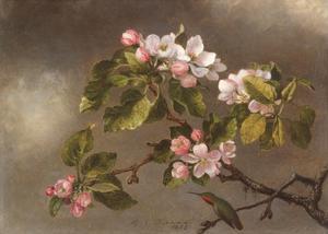 Hummingbird and Apple Blossoms by Martin Johnson Heade