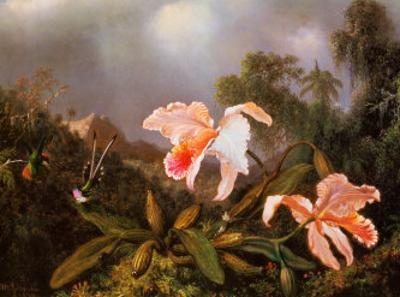 Jungle Orchids and Hummingbirds by Martin Johnson Heade