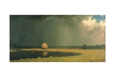 Salt Marsh Hay, C.1865