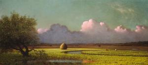 Sunlight and Shadow: The Newbury Marshes, c. 1871/1875 by Martin Johnson Heade