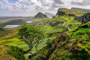 Scenic View of Quiraing Mountains in Isle of Skye, Scottish Highlands, United Kingdom by Martin M303