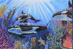 Killer Whales by Martin Nasim