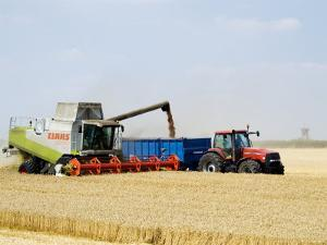 Combine Harvester Unloading Grain into Trailer, England by Martin Page