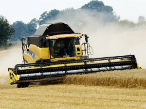 Yellow New Holland Combine Harvester Harvesting Wheat Field, UK by Martin Page