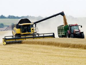 Yellow New Holland Combine Harvester Unloading Grain into Trailer, UK by Martin Page