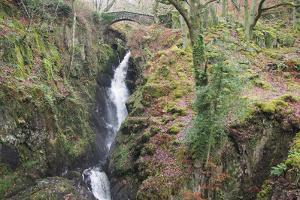 Aira Force, Matterdale, Ullswater, Lake District National Park, Cumbria, England, United Kingdom by Martin Pittaway