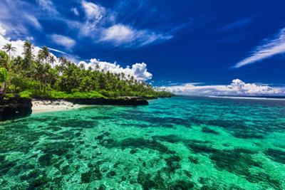 Beach with Coral Reef on South Side of Upolu, Samoa Islands by Martin Valigursky