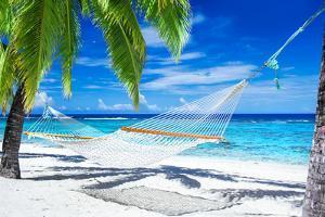 Empty Hammock between Palm Trees on Tropical Beach by Martin Valigursky
