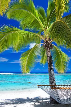 Empty Hammock under Palm Tree on Tropical Beach by Martin Valigursky
