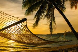 Hammock Silhouette with Palm Trees on a Beautiful Beach at Sunset by Martin Valigursky