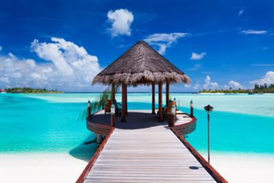 Jetty with Amazing Ocean View on Tropical Island by Martin Valigursky
