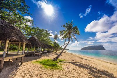 Tropical Beach with a Coconut Palm Trees and a Beach Fales, Samoa Islands by Martin Valigursky