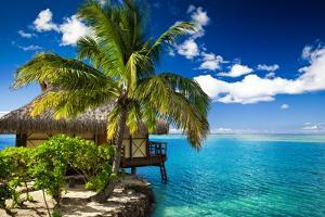 Tropical Bungalow and Palm Tree next to Amazing Blue Lagoon by Martin Valigursky