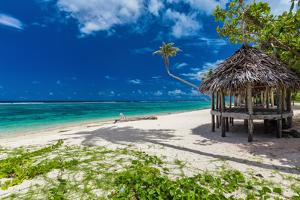Tropical Vibrant Natural Beach on Samoa Island with Palm Tree and Fale by Martin Valigursky