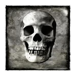 Skull I by Martin Wagner
