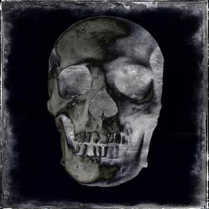 Skull II by Martin Wagner