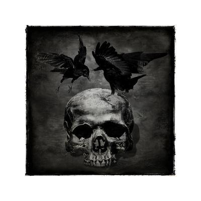 Skull with Crows