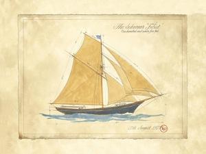 The Schooner Juliet by Martin Wiscombe