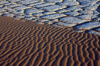 Area of ancient clay lake-bed, exposed by eroded sandstone, Sossusvlei, Namib-Naukluft by Martin Withers