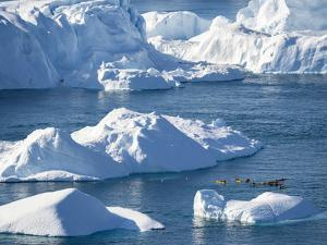 Boat at Ilulissat Icefjord, UNESCO, Ilulissat Kangerlua at Disko Bay. Greenland by Martin Zwick