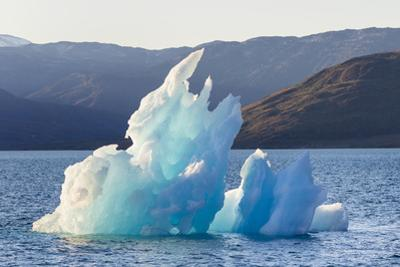 Icebergs drifting in the fjords of southern Greenland, Denmark by Martin Zwick