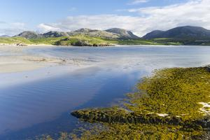 Isle of Lewis, the Uig Bay (Traigh Uuige) with Bladder Wrack. Scotland by Martin Zwick
