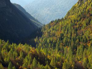 Italy, Valle Corpassa in Civetta, Moiazza mountain range in the dolomites of the Veneto. by Martin Zwick