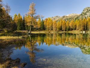 Lago San Pellegrino during fall at Passo San Pellegrino in the Dolomites, Italy. by Martin Zwick